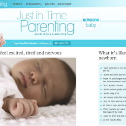 Online Family Life Education